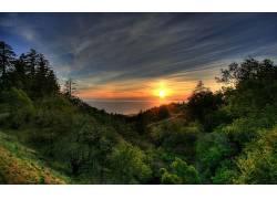 96742,地球,风景,日落,森林,岸,壁纸图片