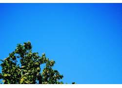 97580,地球,天空,壁纸图片