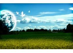 13518,地球,A,轻柔的,世界,草,领域,绿色的,行星,天空,云,鸟,蓝色图片