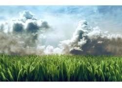 51489,地球,草,壁纸图片