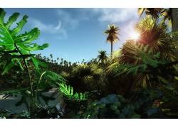 84610,地球,森林,树,太阳,壁纸图片