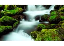 84646,地球,瀑布,瀑布,绿色的,水,壁纸