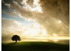 76183,地球,风景,树,云,壁纸图片