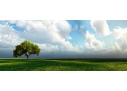 57389,地球,树,树,云,壁纸图片