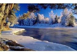 85271,地球,冬天的,雪,水,树,壁纸图片