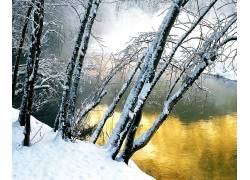 59324,地球,冬天的,壁纸图片