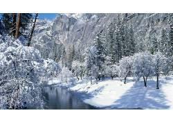 85272,地球,冬天的,水,树,雪,壁纸图片