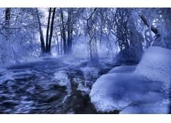 85277,地球,冬天的,雪,树,水,壁纸图片