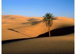 24576,地球,沙漠,壁纸