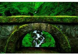 21629,地球,溪流,拱门,苔藓,森林,石头,壁纸图片
