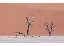 118044,地球,沙漠,壁纸