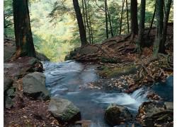 22549,地球,瀑布,瀑布,河,森林,壁纸