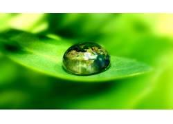 86236,地球,水,滴,水,叶子,壁纸