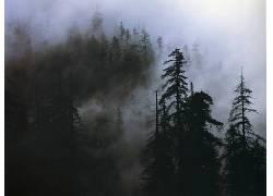 23667,地球,雾,壁纸图片