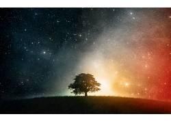 86839,地球,A,轻柔的,世界,风景,草,天空,明星,树,空间,壁纸