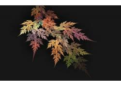 28648,地球,叶子,壁纸图片