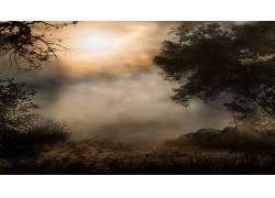 121986,地球,雾,壁纸图片