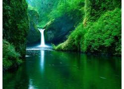 37864,地球,瀑布,瀑布,水,温室,自然,壁纸图片