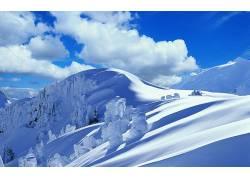 39704,地球,冬天的,壁纸图片