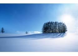 82491,地球,冬天的,风景,雪,壁纸图片