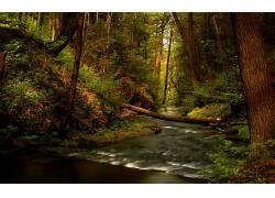 山间溪水美景壁纸图片