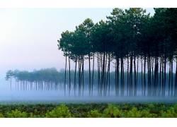 114517,地球,雾,壁纸图片