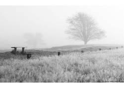 110921,地球,雾,壁纸图片