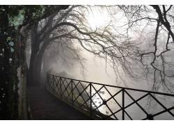 114977,地球,雾,壁纸图片