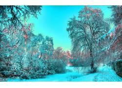 115565,地球,冬天的,壁纸