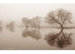 111972,地球,雾,壁纸图片