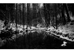115609,地球,冬天的,壁纸图片
