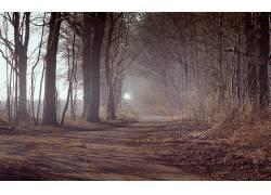 115345,地球,雾,壁纸图片