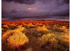 112812,地球,风景,沙漠,壁纸图片