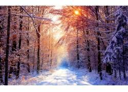 116306,地球,冬天的,烟火,壁纸图片