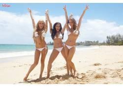 人,艾米莉艾迪生,胸部,比基尼泳装,布雷特罗西,一群美女,Taylor V