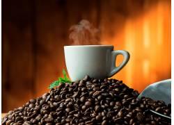 866522,食物,咖啡,咖啡,豆子,杯子,仍然,生活,壁纸