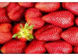 800051,食物,草莓,水果,红色,水果,浆果,壁纸
