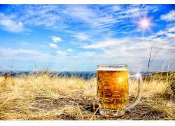 851443,食物,啤酒,玻璃,酒精,喝酒,天空,壁纸