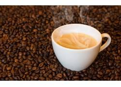 877813,食物,咖啡,咖啡,豆子,杯子,仍然,生活,壁纸