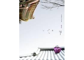 冬季飞燕与屋檐风景写真
