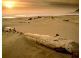 191932,地球,海滩,壁纸