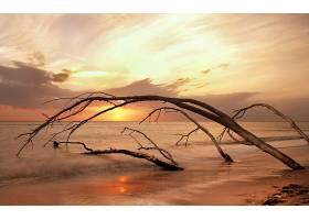 170943,地球,海滩,壁纸