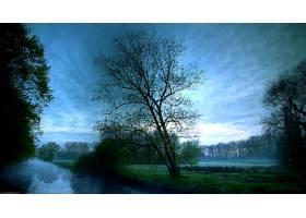 151415,地球,树,树,摄影,风景,溪流,雾,天空,云,日出,领域,寂寞的