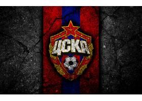 运动,PFC,CSKA,莫斯科,足球,俱乐部,标识,象征,壁纸(11)