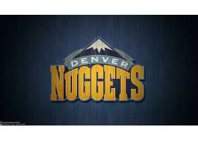 运动,丹佛,金砖,篮球,标识,美国篮球职业联盟,壁纸(5)