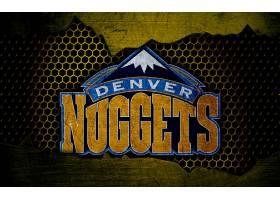 运动,丹佛,金砖,篮球,标识,美国篮球职业联盟,壁纸(8)