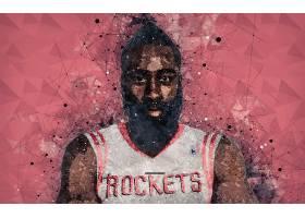 运动,詹姆斯,变硬,篮球,美国篮球职业联盟,休斯顿,火箭,壁纸(2)