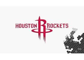 运动,休斯顿,火箭,篮球,美国篮球职业联盟,标识,壁纸(22)