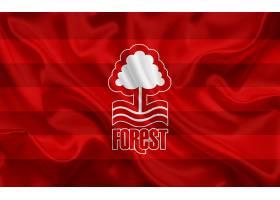 运动,诺丁汉,森林,旧金山,足球,俱乐部,标识,象征,壁纸(3)图片