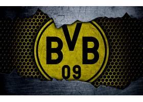 运动,博鲁西亚,多特蒙德,足球,俱乐部,标识,象征,BVB,壁纸(11)